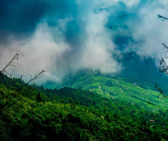 Places for visit in Darjeeling