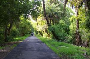Keoladeo National Park (Pinterest.com)1