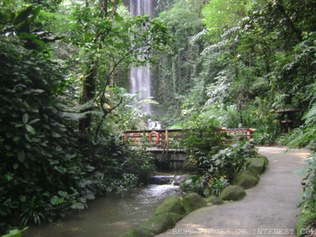 Dazzling waterfall inside the Jurong Bird Park