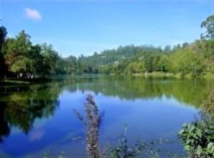 Kodai Lake (wikipedia.org)