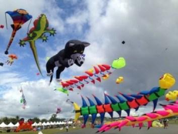 International-Kite-Flying-Festival-in-Gujarat-768x576