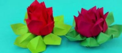 Go green with reuse paper and paper lotus