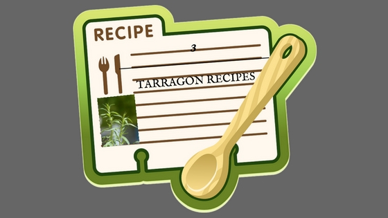 3 Tarragon Recipes to Try Out