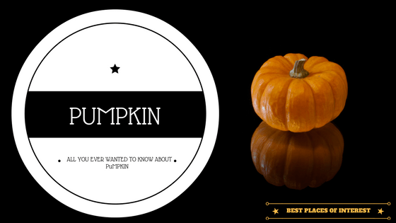 All You Ever Wanted to Know About a Pumpkin