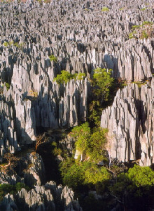 Madagascar, bizarre places