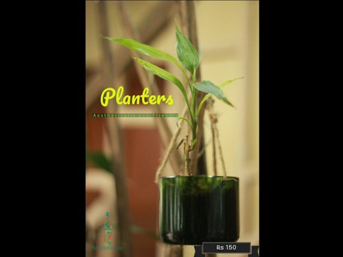 Planters, eco-friendly gifts this Diwali