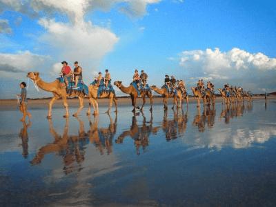 Camel Safari, adventure activities in Australia