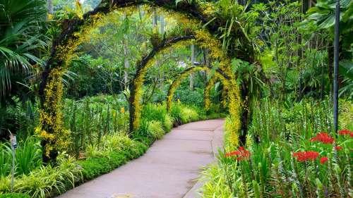 Singapore Botanic Gardens, Singapore attractions