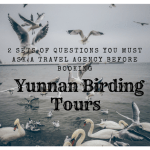 2 Sets of Questions You Must Ask a Travel Agency before Booking Yunnan Birding Tours