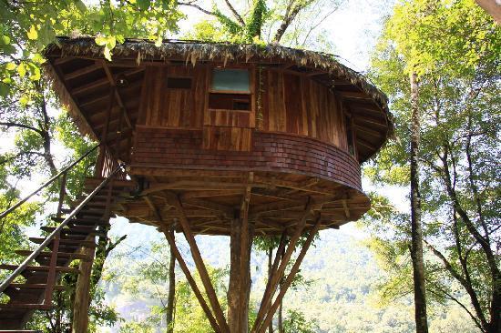 Athirappilly treehouse honeymoon Kerala