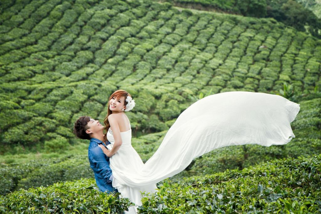 Munnar tea gardens, honeymoon Kerala