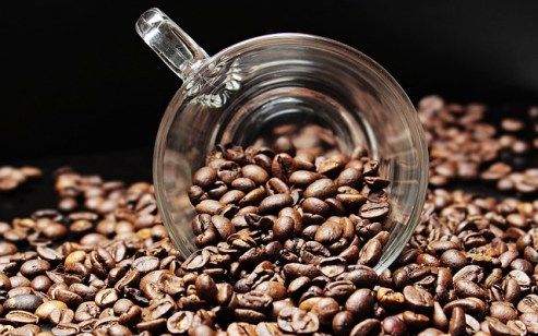 Coffee beans is rajasic diet.