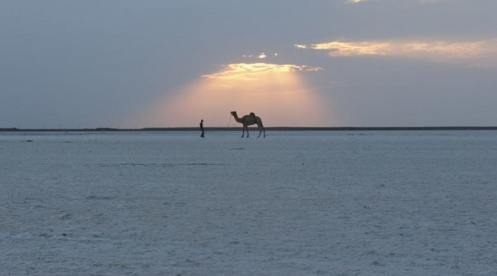 The Great White Rann of Kutch