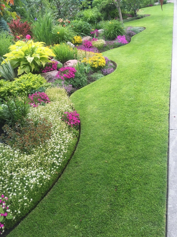 89 Best Choices Front Yard Landscaping Ideas On A Budget 4602