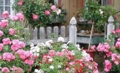 99 Small Front Yard Landscaping Ideas Low Maintenance 73