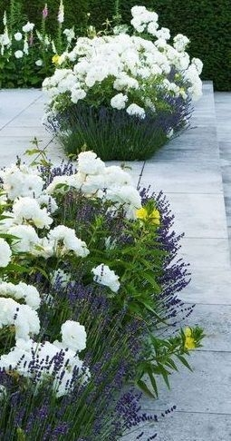 99 Small Front Yard Landscaping Ideas Low Maintenance 4437