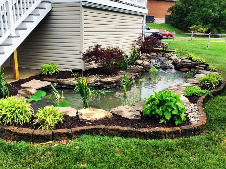 Koi Pond|Water gardens|Middlesex County|MA on Backyard Pond Landscaping Ideas id=13305