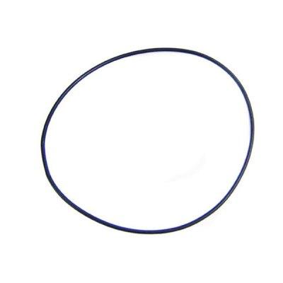 DynaGlas Pump Sta-Rite Seal Plate O-ring U9-373