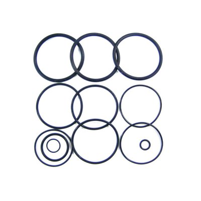 Jandy O-ring Kit DEL DEV CV CL Filter R0358000