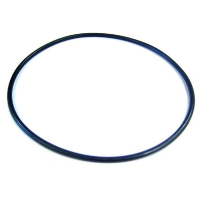 Aladdin NorthStar Hayward Pump Seal Plate O-Ring SPX4000T