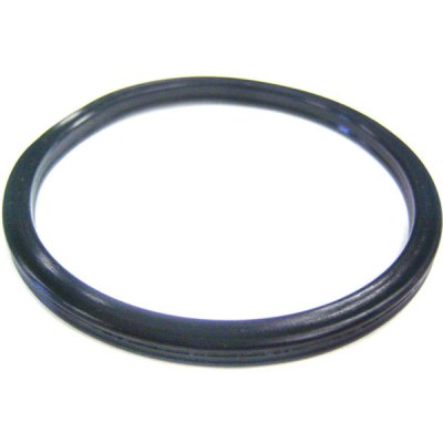 Pentair Diffuser Seal Gasket SuperFlo VS Pinnacle O-395 355030