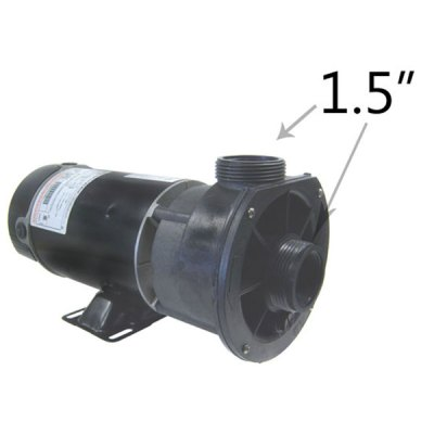 Waterway 2 Speed 1.0 HP 115V Spa Pump 3420410-15