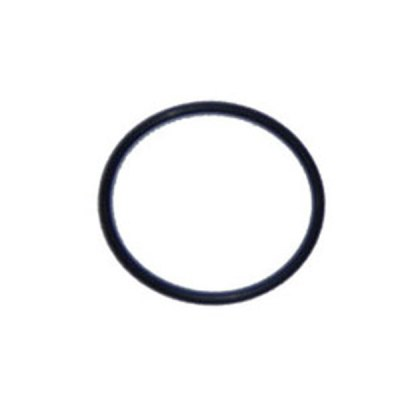 Waterway O-Ring 2 in. Union 805-0229