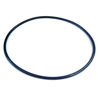 WhisperFlo Pump Pentair Seal Plate O-Ring  071445 2265