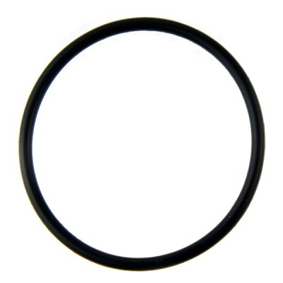 Jandy Zodiac PLC700 PLC1400 Salt Cell Union O-Ring PLC-RING
