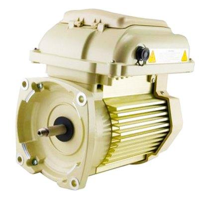 Pentair SuperFlo VS Pump Motor and Drive 353132S