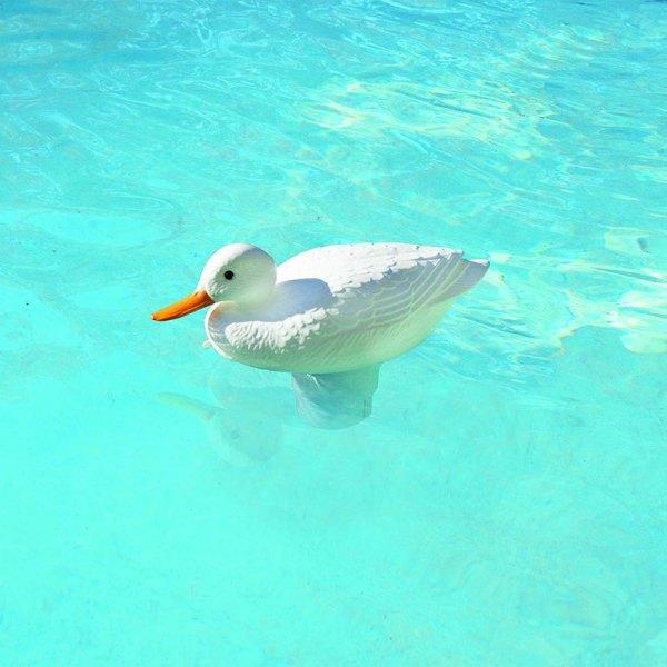 PoolMaster Clori-Duck White 3 in. Pool Chlorine Tablet Feeder 32131