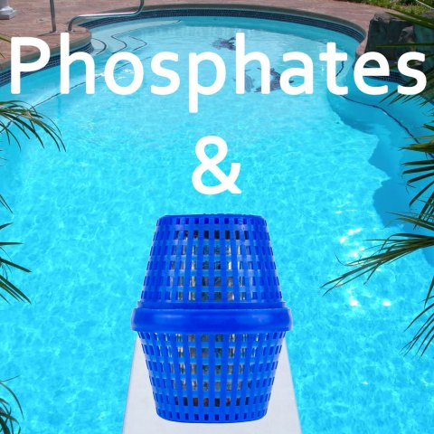 Should I Worry About Phosphates In the Swimming Pool If I Have PoolRx Unit Installed?
