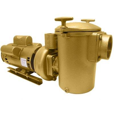 Swimming Pool Spa Aqua-Flo AC-Series Brass Pump 5 HP 1PH 10050010