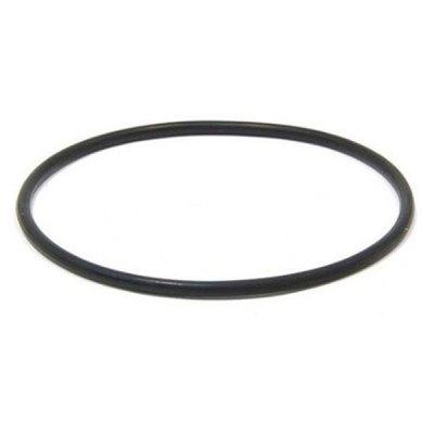 Zodiac O-Ring AquaPure Ei Series Chlorine Generator R0511600 R0738500