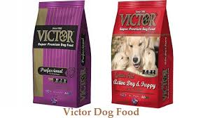 Victor Dog Food - Revolutionizing the Way We Treat Our Pets