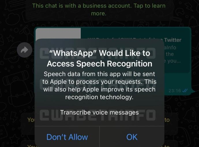 WhatsApp to transcribe voice messages with an assist from Apple