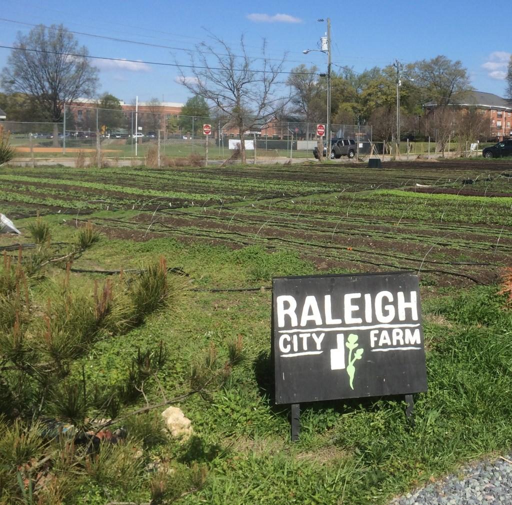 Raleigh City Farm-Mordecai, Best Raleigh Neighborhoods, Inside-the-Beltline, Mordecai Neighborhood, Mordecai Subdivision