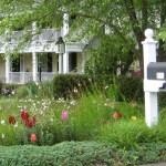 Neighborhoods- Contents