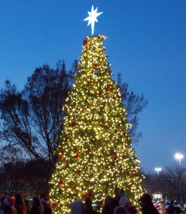 Christmas Tree Lighting in Lake Norman