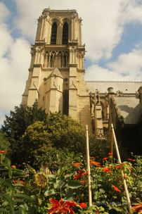 Notre Dame de Paris from the park