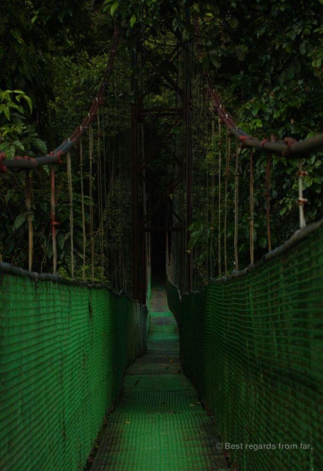 The suspension bridge of Reserva Biologica la Tirimbina, Costa Rica