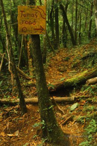 The Lost and Found treasure hunt, Panama