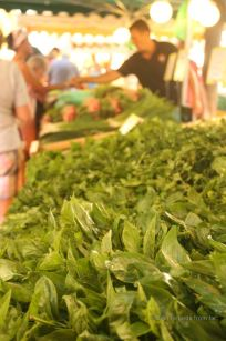 Trading fresh herbs on the market, Toulon