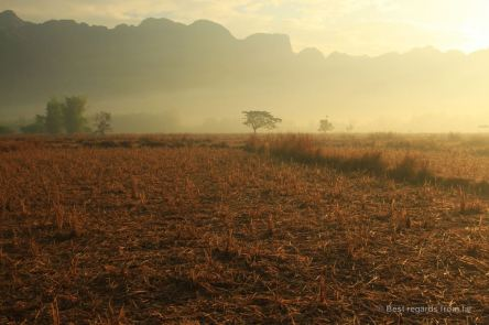 Sunrise on the harvested rice fields of the loop, Laos