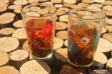 Tea tasting in Ban Komaen Tea Village, Pongsali, Laos