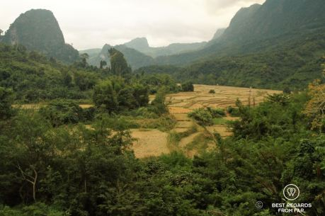 Rice paddies, Muang Ngoy Neua, Laos