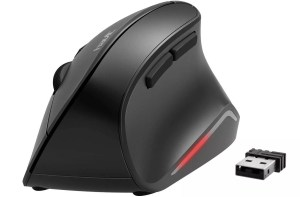 HAVIT Ergonomic Wireless Mouse