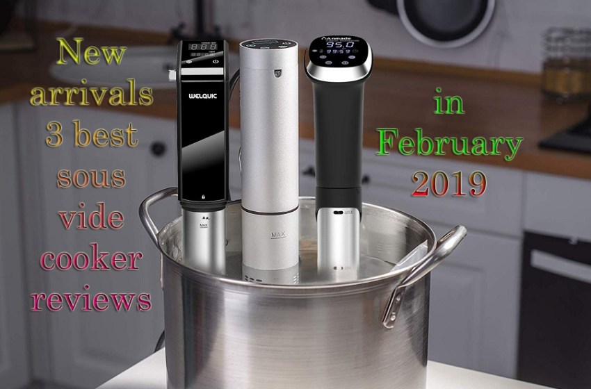 New Arrivals 3 best sous vide cooker in February, 2019