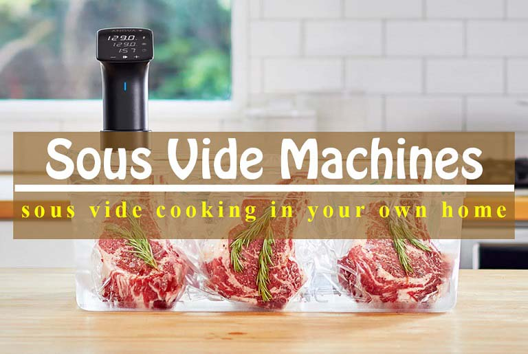 Best Sous Vide Machines For 2020