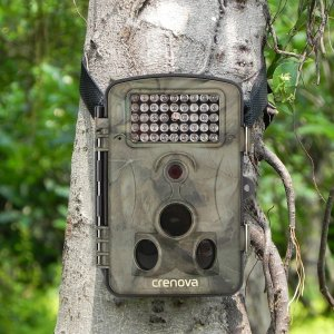 An image of the Crenova Trail Camera